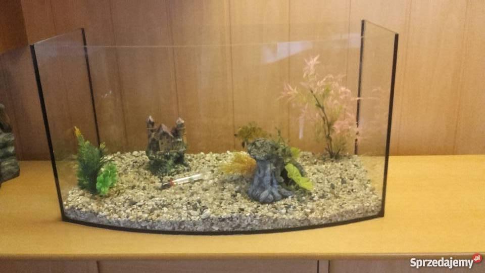akwarium dlla rybek