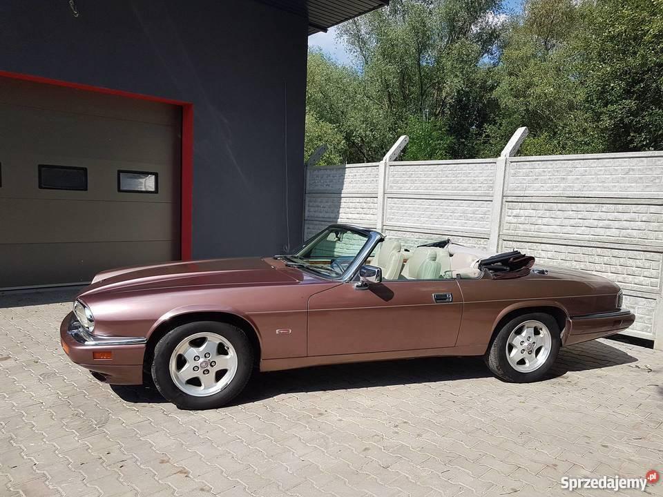 Metaliczny Jaguar