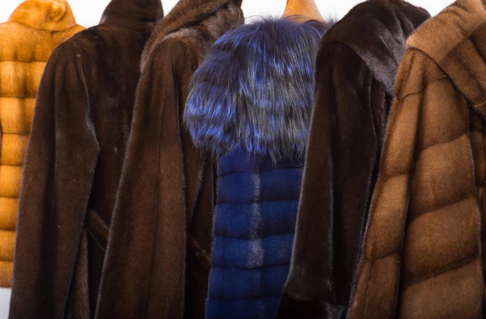 Jak kupować kurtki i płaszcze przez internet? Abc zakupów internetowych
