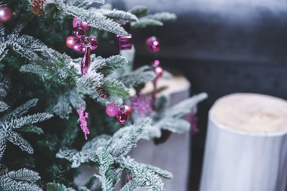 Jak ozdobić ogród na Boże Narodzenia? Świąteczne oświetlenie i co jeszcze?