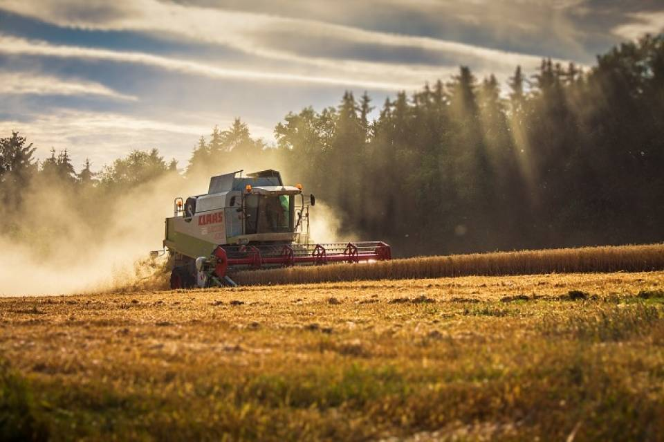 Najczęściej używane maszyny rolnicze - kombajny, ciągniki, pługi