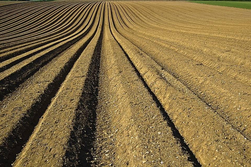 Jakie maszyny uprawowe i do nawożenia są niezbędne w gospodarstwie? Agregaty, wały, beczkowozy, rozrzutniki...