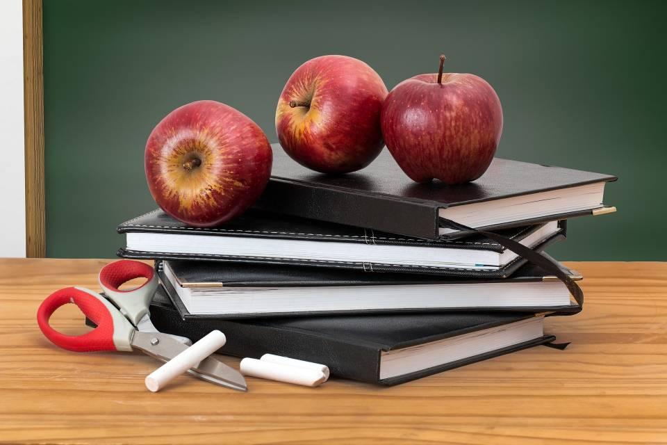 Nauczyciele, lektorzy, pedagodzy – kto znajdzie zatrudnienie w oświacie?