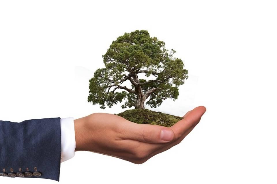 Specjalista ds. ochrony środowiska – czym się zajmuje? Ile można zarobić w sektorze ochrony środowiska, gdzie szukać pracy?