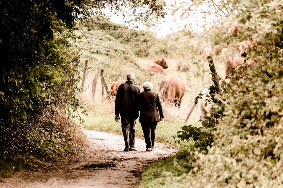 Opiekunka osoby starszej lub niepełnosprawnej – jaka powinna być? Gdzie szukać opiekunki dla seniorów?