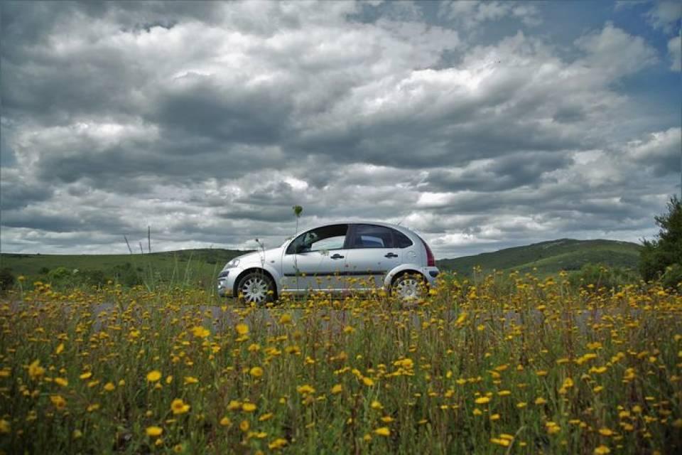 Samochody miejskie marki Citroen – które sprawdzają się do jazdy po mieście?