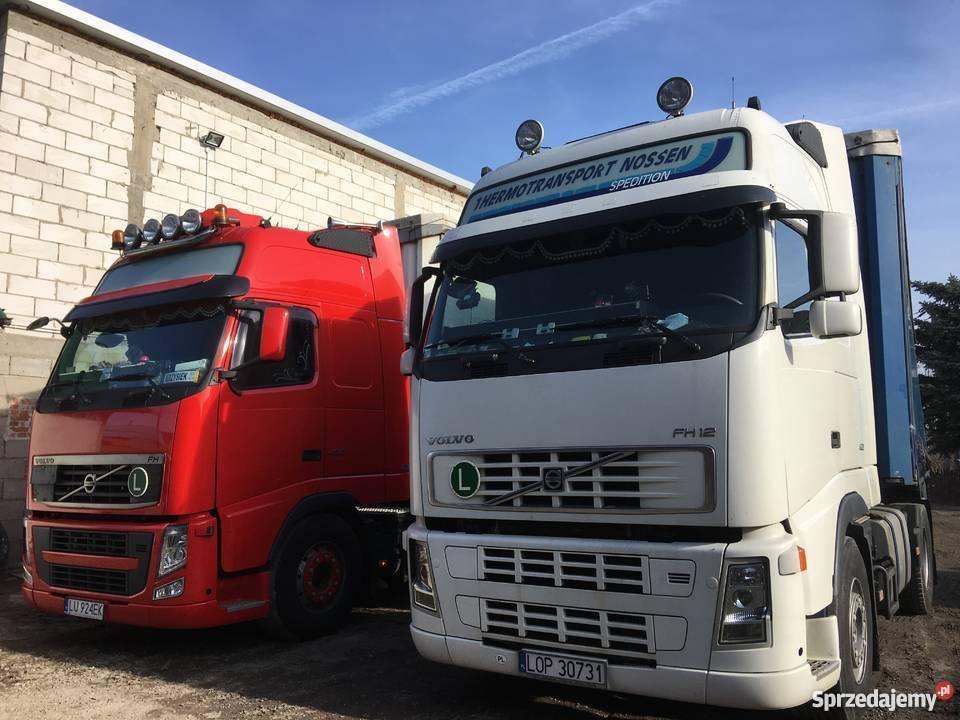 Kiedy warto skorzystać z usług firmy transportowej? Czym się kierować podczas wyboru firmy transportowej?