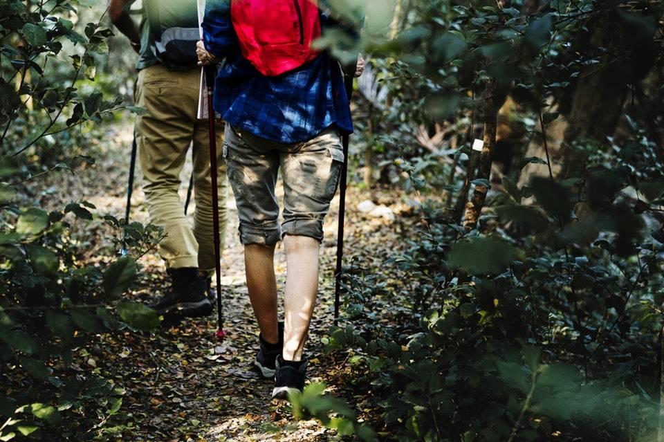 Nordic walking – od czego zacząć? Jakie korzyści zdrowotne daje marsz z kijkami?